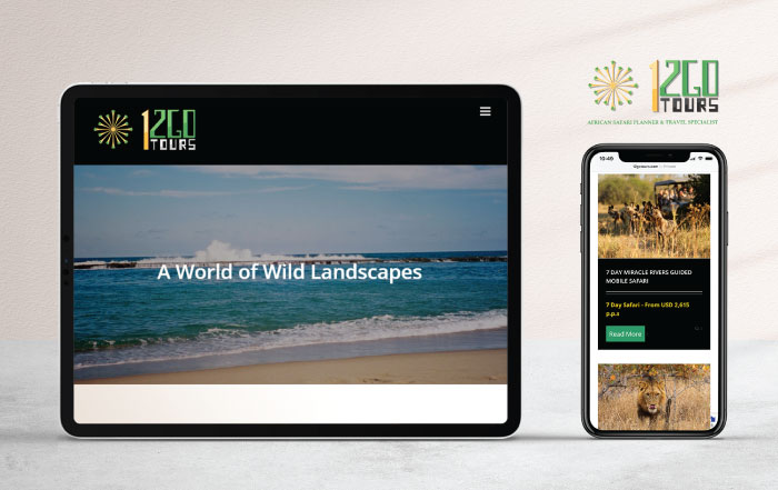12 Go Tours Website Development